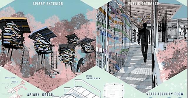 AYDA - Plan Bee: A City Beekeeping Project, Shahmeena Labeeb, Taylor's University