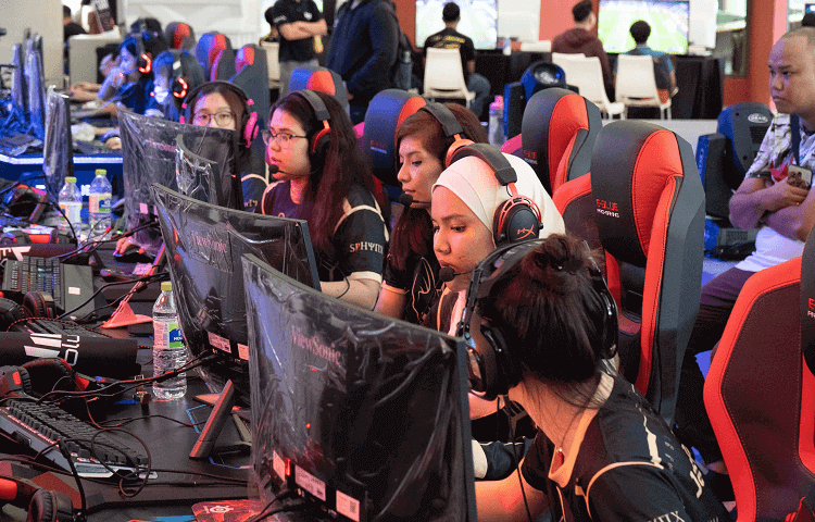Malaysian Female Gamers Sphynx